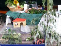 2008_walldorf02